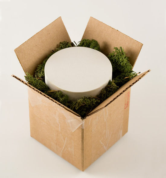 Box-in-moss1