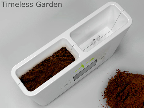 Timeless_garden_1