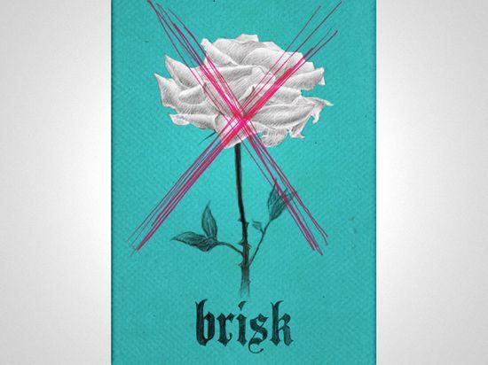 Brisk_rose